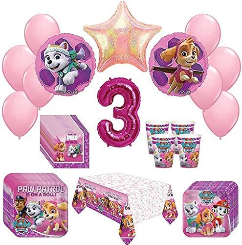 Top 10 SKYE PAW PATROL Birthday Decorations – Kids' Party Supply Packs