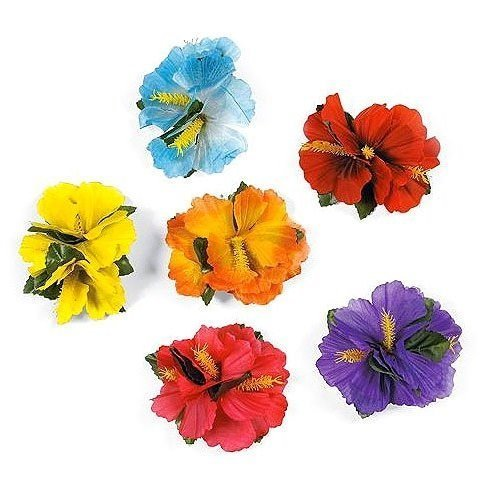 Top 9 Hibiscus Flower Hair Clips – Kitchen & Dining Features