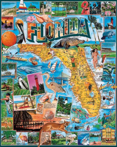Top 8 Florida Puzzles for Adults – Jigsaw Puzzles